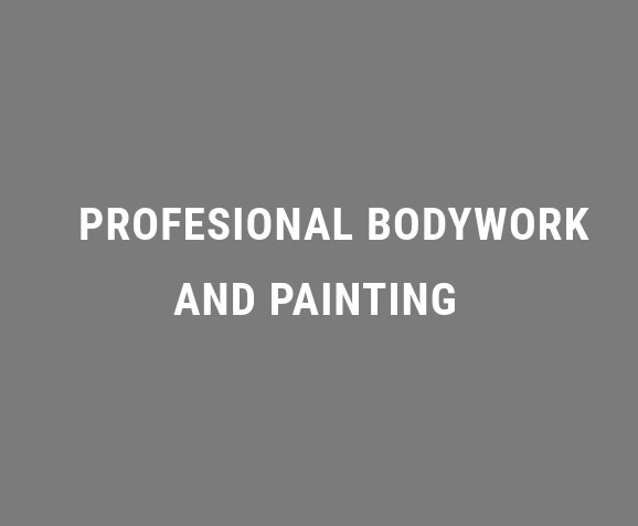 Profesional bodywork and painting